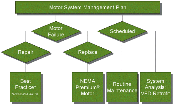 Do you have a Motor System Management Plan in place?